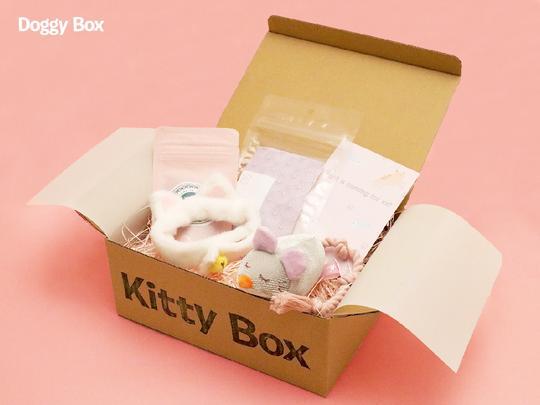 ワンちゃんのおもちゃとおやつの定期便【Doggy Box】ペット用品のサブスク